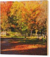 Colonial Fall Colors Wood Print