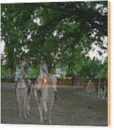 Colonial Ghost In Williamsburg Wood Print