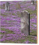 Colonial Tombstones Amidst Graveyard Phlox Wood Print by John Stephens