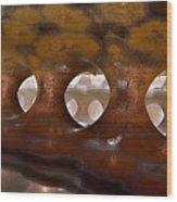 Colonnade Mysteria Wood Print