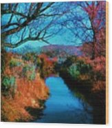 Color Along The River Wood Print