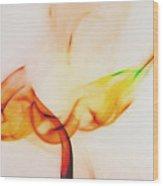 Color And Smoke I Wood Print