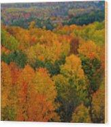 Color Burst Vertical Wood Print