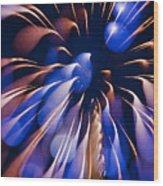 Color Explosion K863 Wood Print
