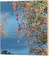 Color Me Beautiful Wood Print