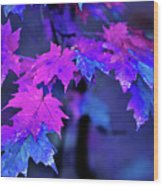 Color Me... Wood Print