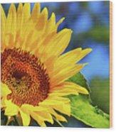 Color Me Happy Sunflower Wood Print