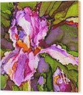 Color Me Iris Wood Print