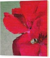 Color Me Red Wood Print