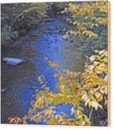 Color On Big Cataloochee Creek Wood Print