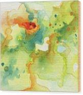 Color Spot 016 Wood Print