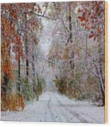 Color Tunnel In The Sourlands Wood Print
