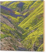 Color Valley Wood Print