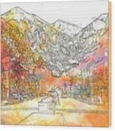Colorado 01 Wood Print