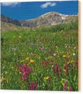 Colorado 14er Handies Peak Wood Print
