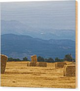 Colorado Agriculture Farming Panorama View Wood Print
