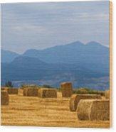 Colorado Agriculture Farming Panorama View Pt 2 Wood Print