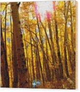 Colorado Aspen Gold 3 Wood Print