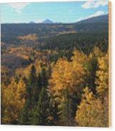 Colorado Autumn - 2 Wood Print