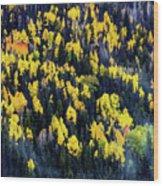 Colorado Autumn #5 Wood Print