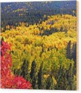 Colorado Autumn Wood Print