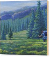 Colorado Backpacker Wood Print