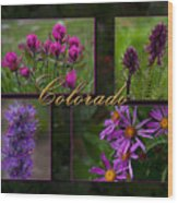 Colorado Beauty Wood Print