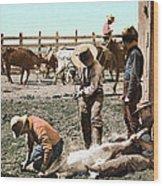 Colorado: Branding Calves Wood Print