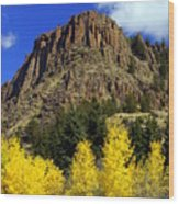 Colorado Butte Wood Print