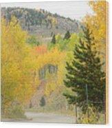 Colorado Colors Wood Print