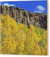 Colorado Fall 3 Wood Print