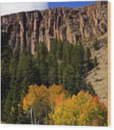 Colorado Fall 4 Wood Print