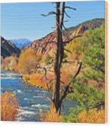 Colorado Fall Wood Print
