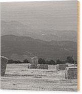 Colorado Farming Panorama View In Black And White Wood Print