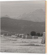 Colorado Farming Panorama View In Black And White Pt 1 Wood Print