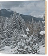 Colorado Foothills Winter Panorama Wood Print