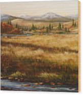 Colorado Meadow Morning Wood Print