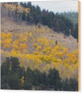 Colorado Mountain Aspen Autumn View Wood Print