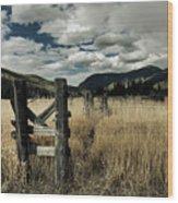Colorado Mountain Meadow Wood Print