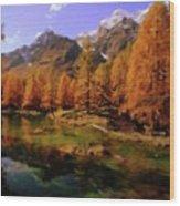 Colorado Nature Wood Print