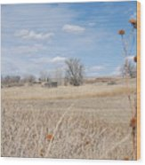 Colorado Plains Wood Print