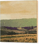 Colorado Ranchlands Wood Print