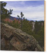 Colorado Red Rocks Wood Print by Barbara Schultheis