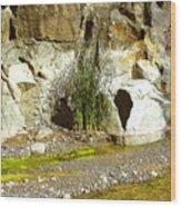 Colorado River Bank Showing High Water Mark Wood Print