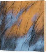 Colorado River Snow Banks Wood Print