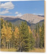 Colorado Rockies National Park Fall Foliage Panorama Wood Print