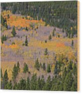 Colorado Rocky Mountains Autumn Colors Wood Print