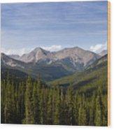 Colorado Rocky Mountains Near Monarch Pass Wood Print