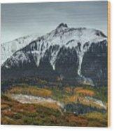 Colorado Seasons Wood Print