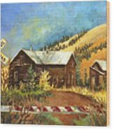 Colorado Shed Wood Print